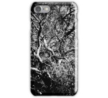 A PLace Without Time  iPhone Case/Skin