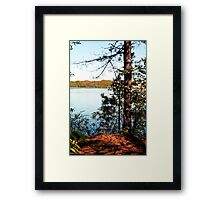 A Touch Of Dogwood Framed Print