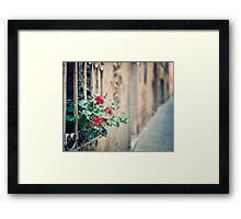 Montalcino #2 Framed Print