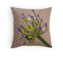 Agapanthus buds ready to bloom Throw Pillow