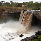 Wannon Falls by Cecily McCarthy