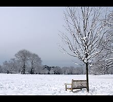 """Cold Seat Sweet View by Christine """"Xine"""" Segalas"""