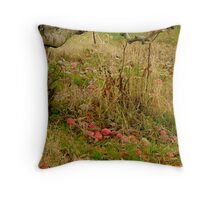 Poetry of the Earth Throw Pillow