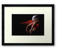 ANSIA Framed Print