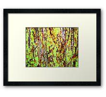 A Walk on the Wild Side Framed Print