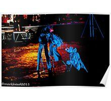 2011 FIREDANCE 95 Poster