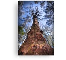 The Majestic Mountain Ash Canvas Print