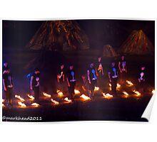 2011 FIREDANCE 146 Poster