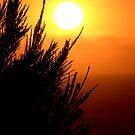 AUSTRALIA DAY SUNRISE by Ekascam
