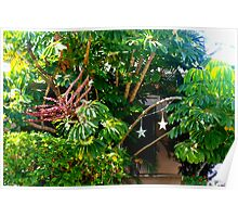 Lush foliage  Poster