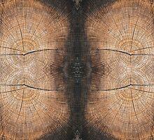 Wood grain Pattern by Ilze Lucero