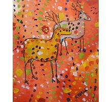 Rock Deer Photographic Print