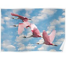 """Power Of Pink"" - roseate spoonbills flying Poster"