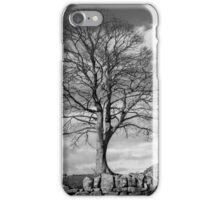 Hadrian's Wall Steel Rigg iPhone Case/Skin