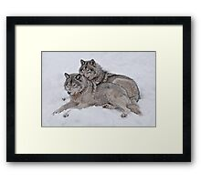 Pride of the Pack Framed Print