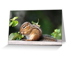 Chippie Greeting Card