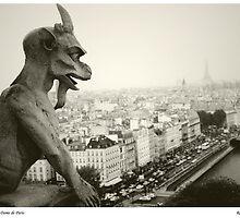 Gargoyle(1), Notre Dame de Paris by Rob Layton