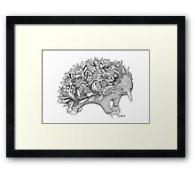 Botanical Echidna Framed Print