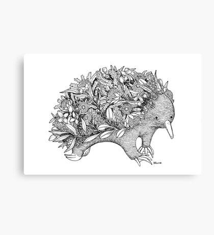 Botanical Echidna Canvas Print
