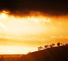 Golden Dawn by Kym Howard