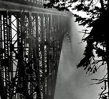 Deception Pass Bridge View from UNDER by agoodsi