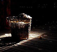 A basket of light by Penny Kittel
