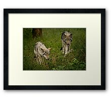 They Are Getting Big Framed Print
