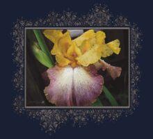 Tall Bearded Iris named Butterfingers Baby Tee