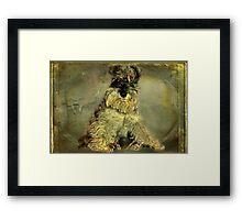 """""""Cameo Princess....."""" Framed Print"""