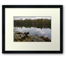 Where The Wild Things Are.... Framed Print