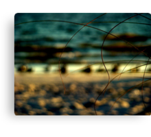 I can hear the seagulls smiling  Canvas Print