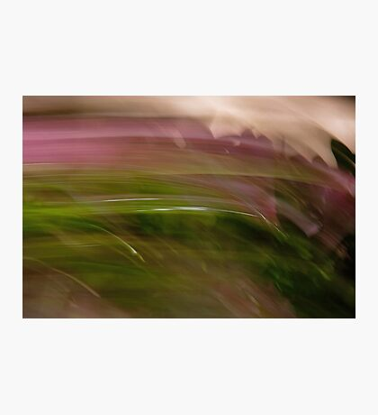 En Plein Air Photographic Print