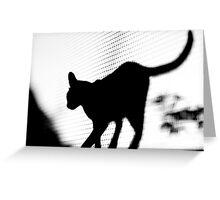Feline Silhouette Greeting Card