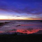 Pescadero Beach  •  Sunset  & Silhouette by Richard  Leon