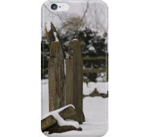Grave yard iPhone Case/Skin