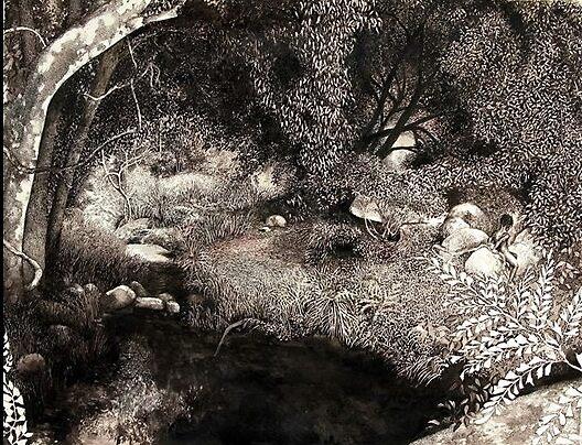 Cedar Creek by Kirsten-Dale