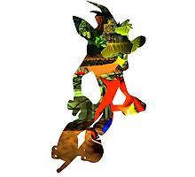 Crash Bandicoot in Pogo Photographic Print