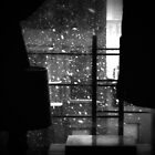 watching the snow fall by ShellyKay