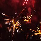Australia Day Fireworks  by janfoster