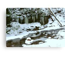 Winter Stream Canvas Print
