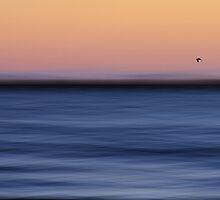 Take flight by Georgie Hart