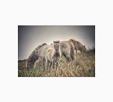 The poneys of Loch Skipport Unisex T-Shirt