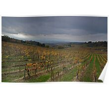 Acres of Vineyards Poster