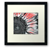 Sunflower Art Framed Print