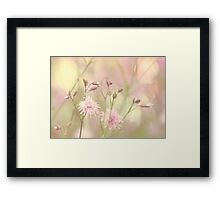 Pastel garden Framed Print