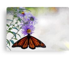 Monarch Butterfly - Migration Metal Print