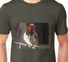 Black-collared Barbet /Rooikophoutkapper Unisex T-Shirt