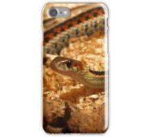 Thamnophis Elegans iPhone Case/Skin