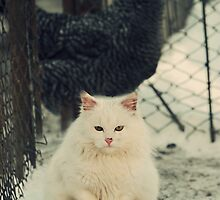 White Garfield by gindacandrei
