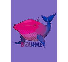 Bisexuwhale - with text Photographic Print